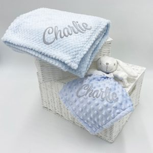 The Blue Bunny Gift Set